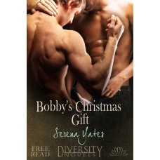 Bobby's Christmas Gift eBook
