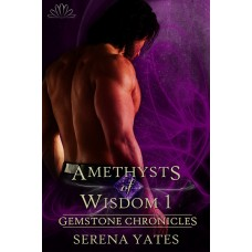 Amethysts of Wisdom 1 (Gemstone Chronicles 2) eBook